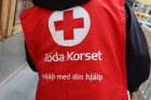 Andrea Södergård